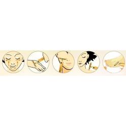 Японский Ионный Вибромассажер Energy Beauty Bar Revoskin Gold оптом
