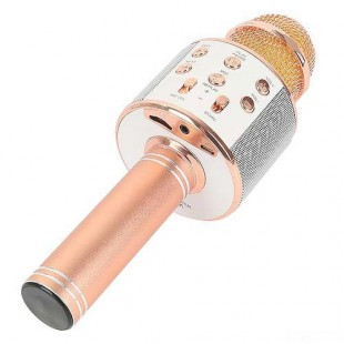 Микрофон караоке WS 858 оптом