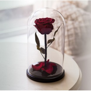 Вечная роза в колбе оптом