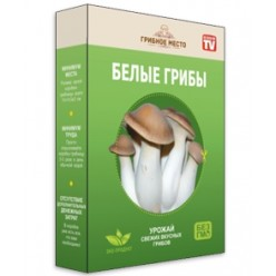 Домашняя грибная ферма в коробке оптом