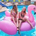 Надувной матрас Гигантский розовый фламинго 192 х 180 см оптом