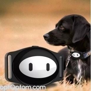 GPS ошейник для собак оптом