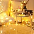 Новогодняя гирлянда Лампочки 4 м  оптом