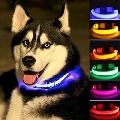 Светящийся ошейник для животных оптом